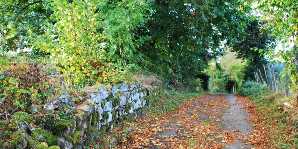 Chemin de Ranchal en automne